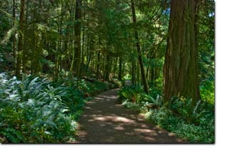 The most beautiful park in the world - East Sooke Park, Sooke BC