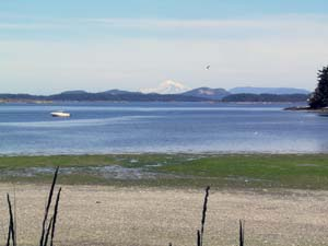 View of Mount Baker from beautiful Sidney BC