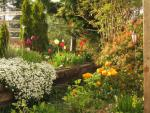 English style garden with many blooms to enjoy